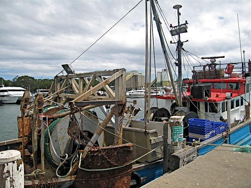 fishmarket-boat