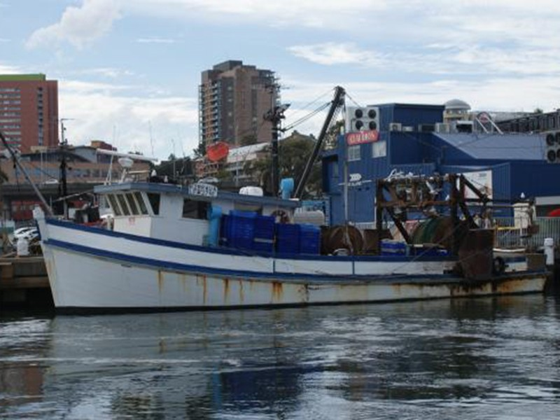 fishmarket-boat2