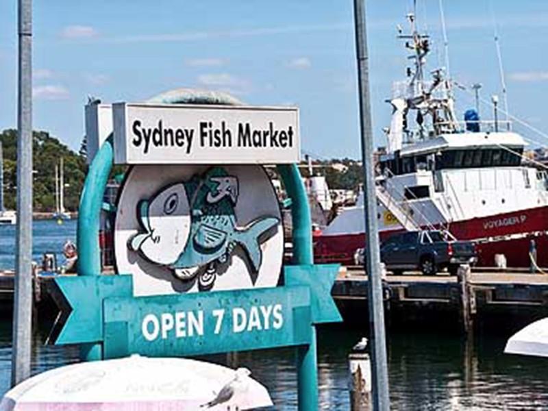 fishmarket-dock