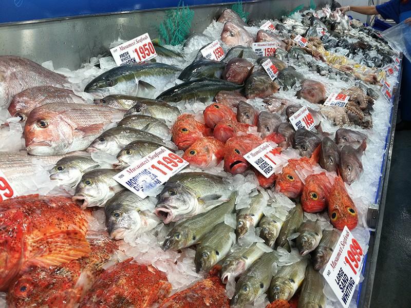 fishmarket-freshfish