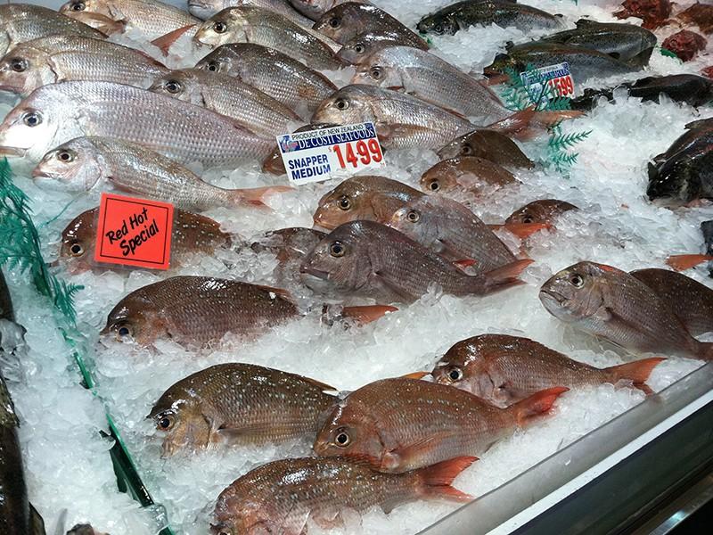 fishmarket-freshfish2