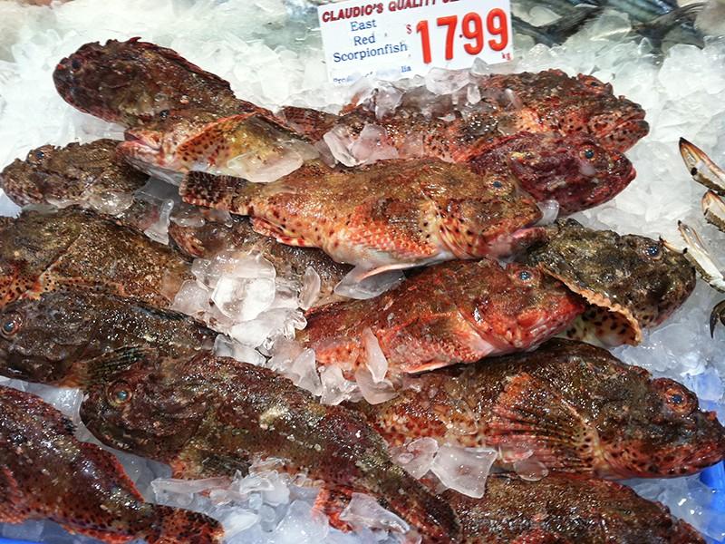 fishmarket-freshfish4