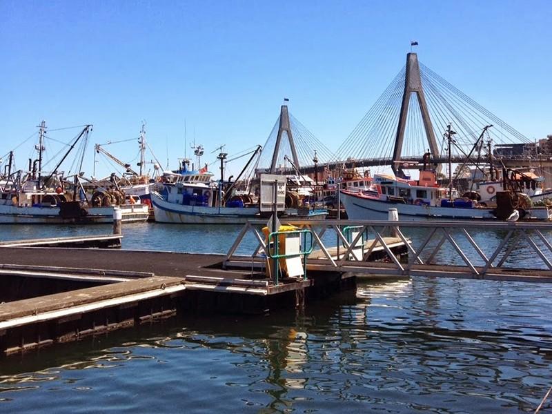 sydney-boats