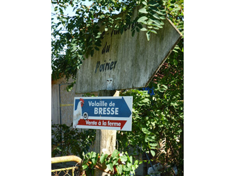 bresseman-003