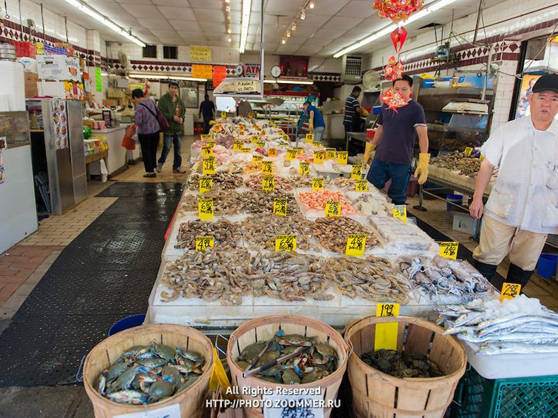 Chinese fish market in New York