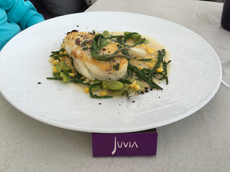 juvia-013