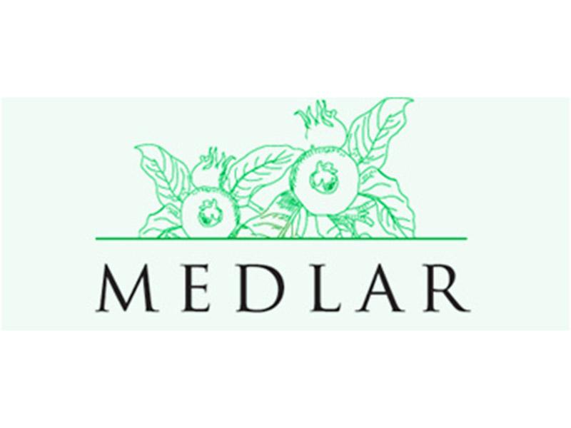 medlar-001