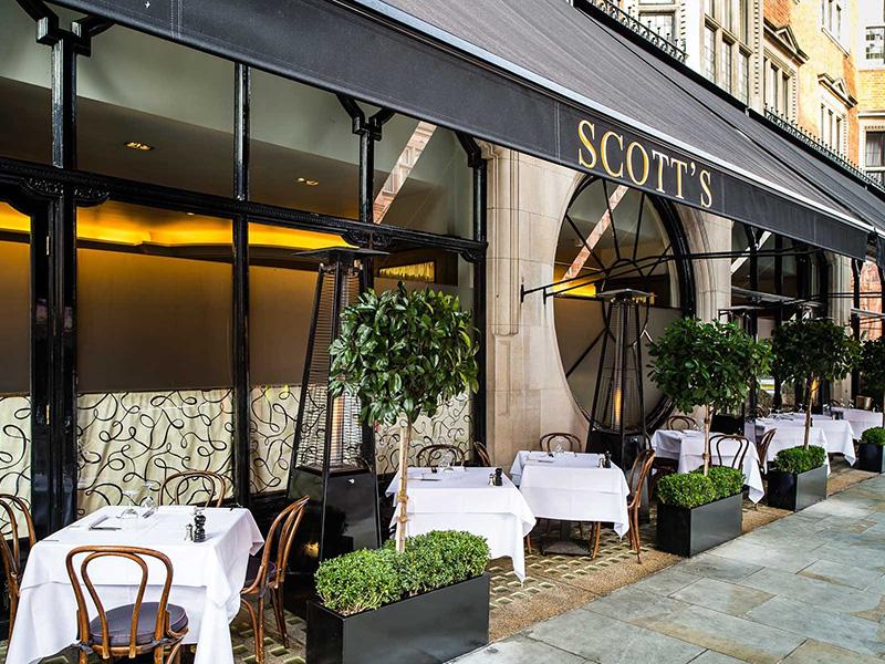 scotts-011