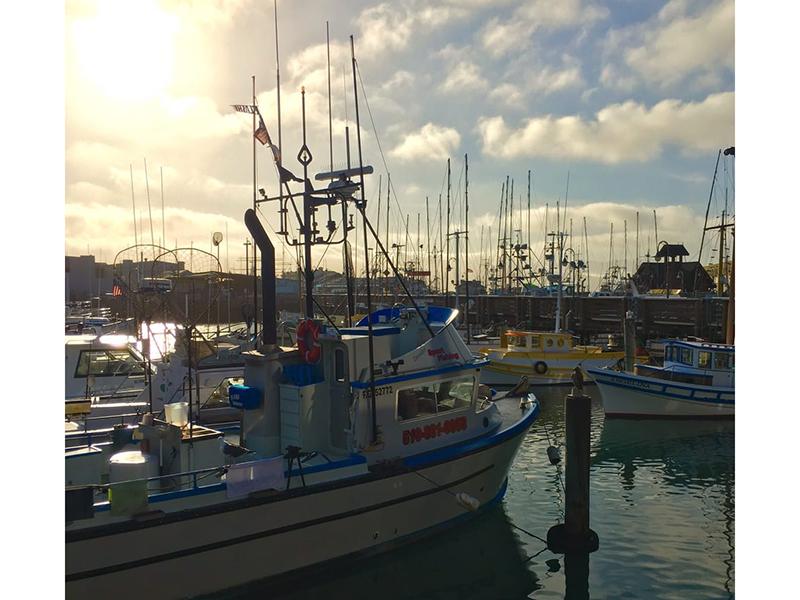 seafood-036