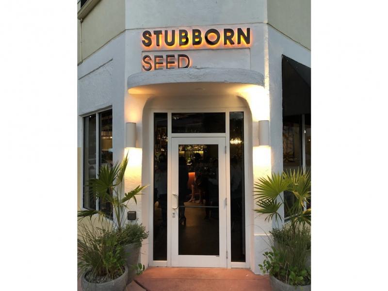 stubborn-04