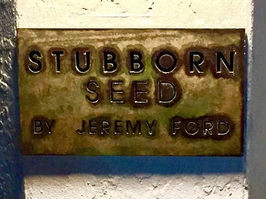stubborn-36