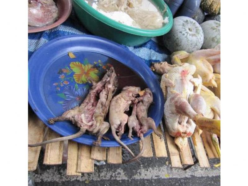 makkasan-markets-next.jpg