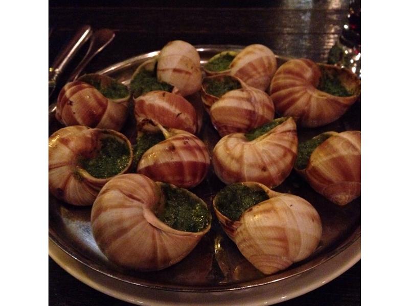 snail-37