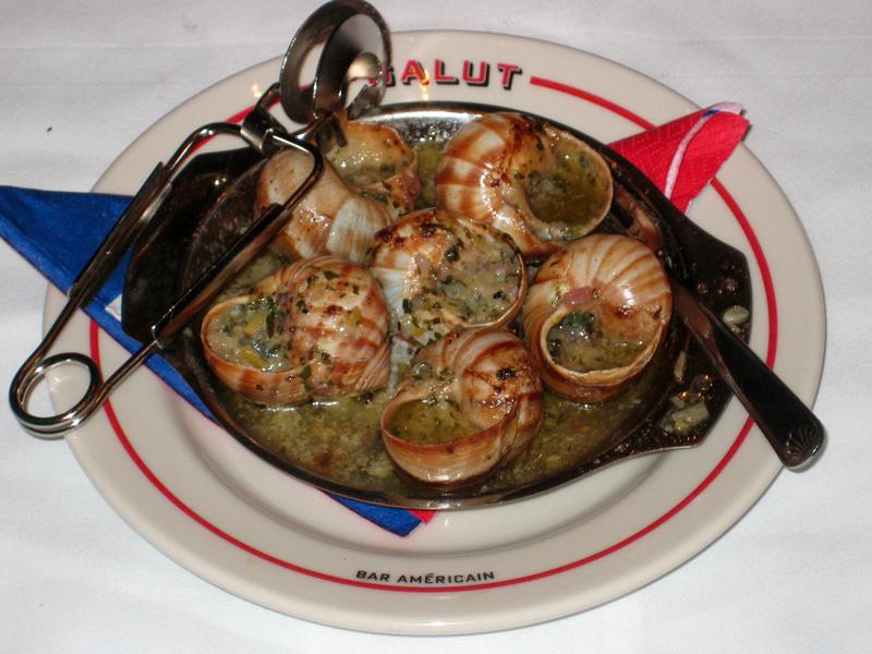snail-39